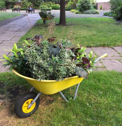 Yellow Flowerpot wheelbarrow